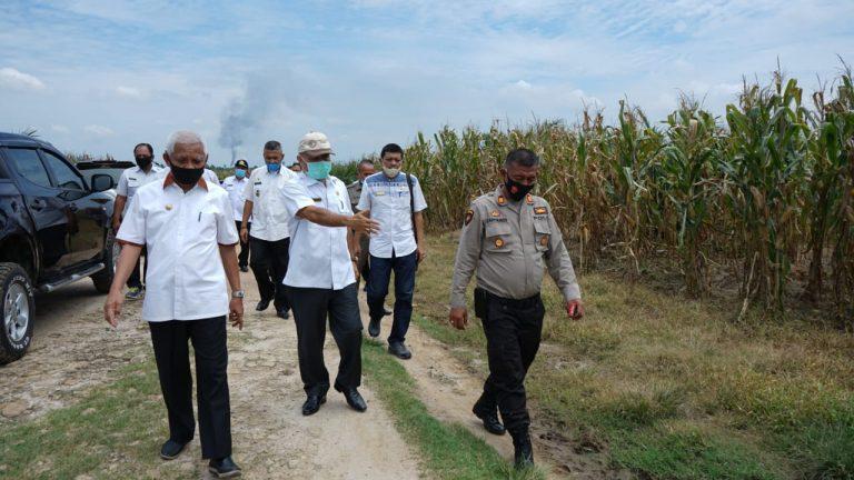Bupati Asahan serta rombongan Tinjau lokasi obyek Wisata Danau teratai juga Program kerjasama penanaman Jagung